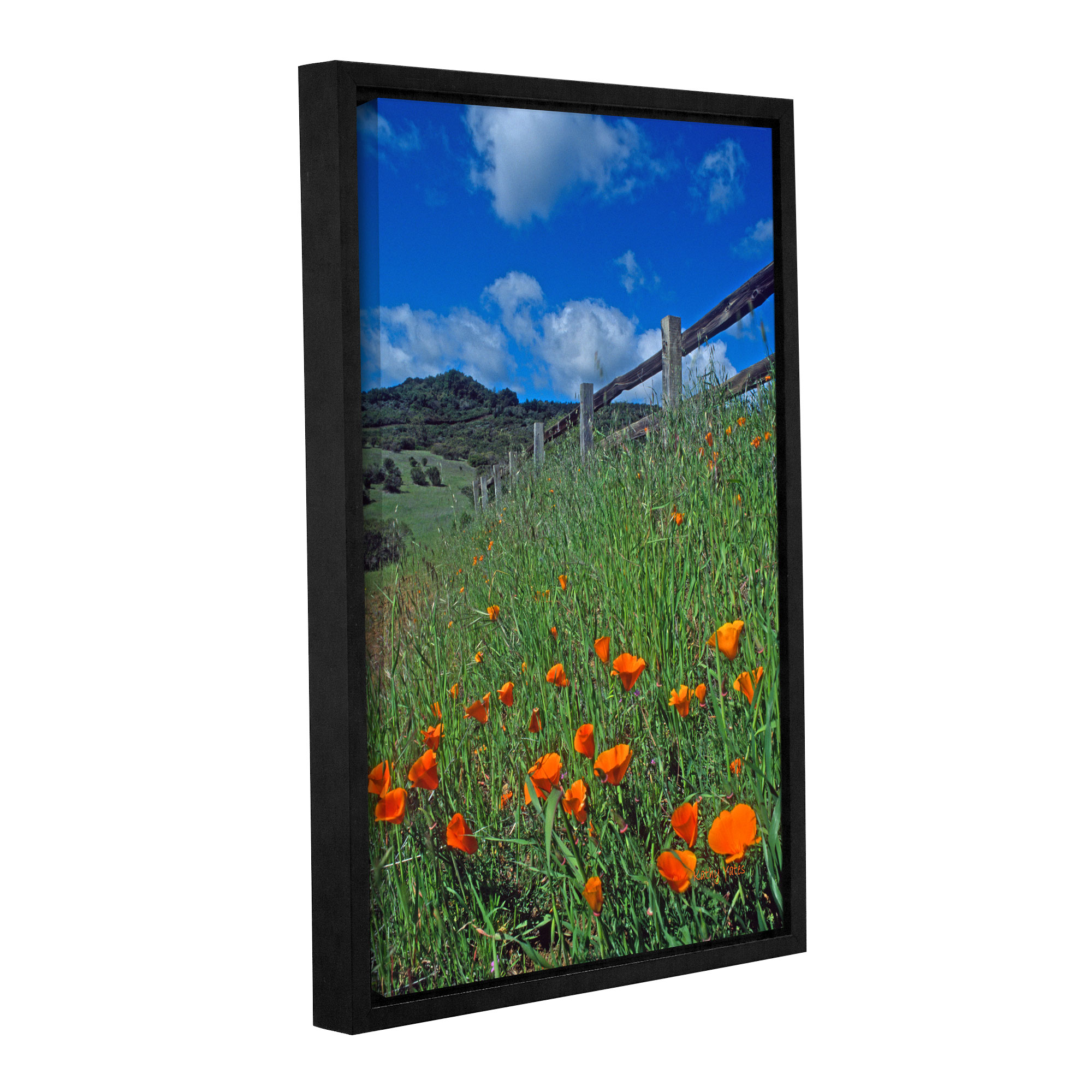Poppies and the Fence' Gallery Wrapped Floater-framed Canvas Art Print