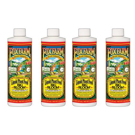 FoxFarm Big Bloom Liquid Concentrate Liquid Plant Food, 4-Pack | FX14091 (Big Bloom Liquid Concentrate)