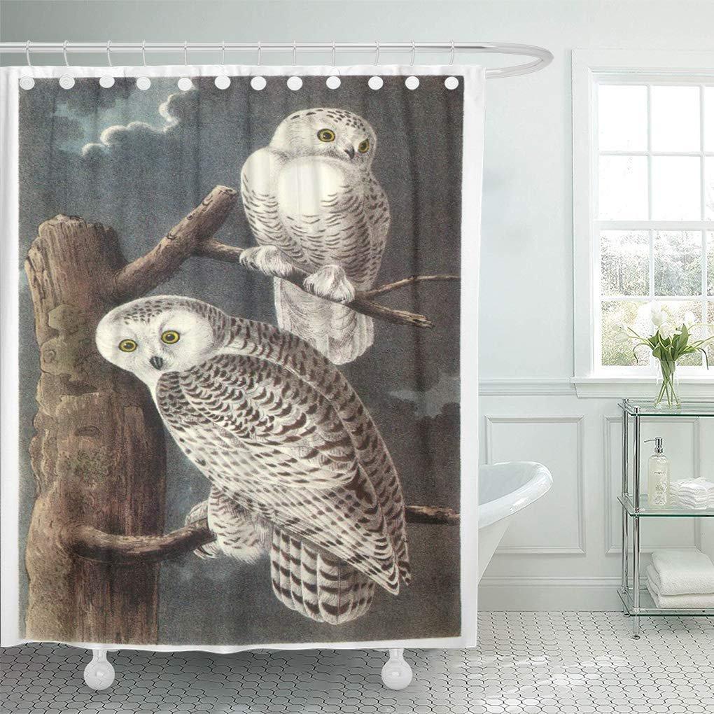 YUSDECOR Bird Snowy by Audubon Small Flower Branch Tree Wing Bathroom Decor  Bath Shower Curtain 10x10 inch