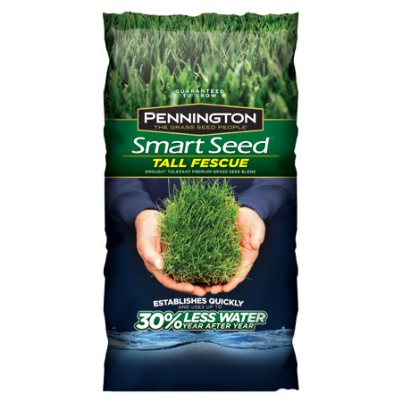 Pennington Smart Seed Tall Fescue Grass Seed, 20 lbs