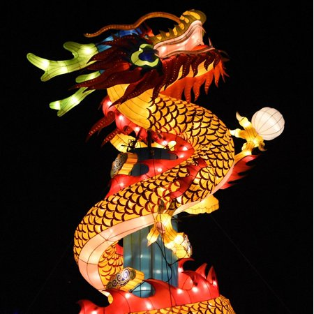 Chinese Dragon Decoration (LAMINATED POSTER Chinese Dragon Dragon Decoration Lighting Poster Print 24 x)