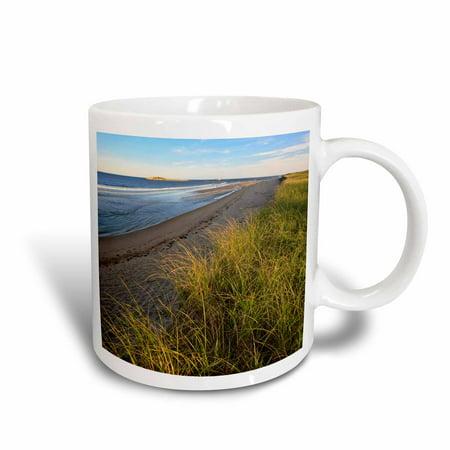3dRose Dune grass, Popham Beach State Park, Maine - US20 JMO1204 - Jerry and Marcy Monkman, Ceramic Mug, 15-ounce