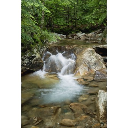 Posterazzi New England New Hampshire White Mountains A Rocky Riverbed And Waterfall Canvas Art   Jenna Szerlag  Design Pics  24 X 38