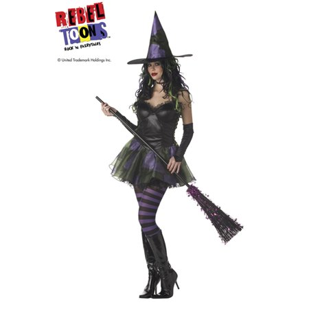 Sexy Rebel Toons Wicked Witch Of The West Adult Womens Halloween Costume