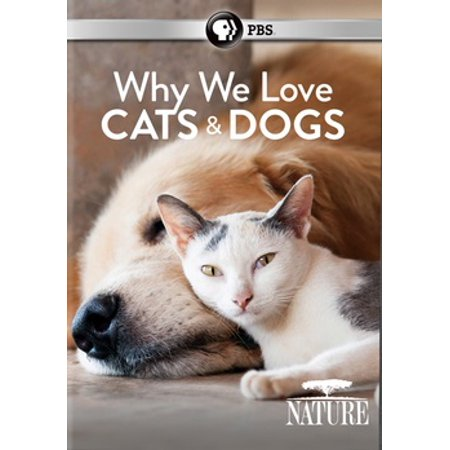 Nature: Why We Love Cats & Dogs (DVD)](Why We Celebrate Halloween History)