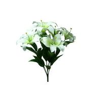 White Lily Bush, 1 Each