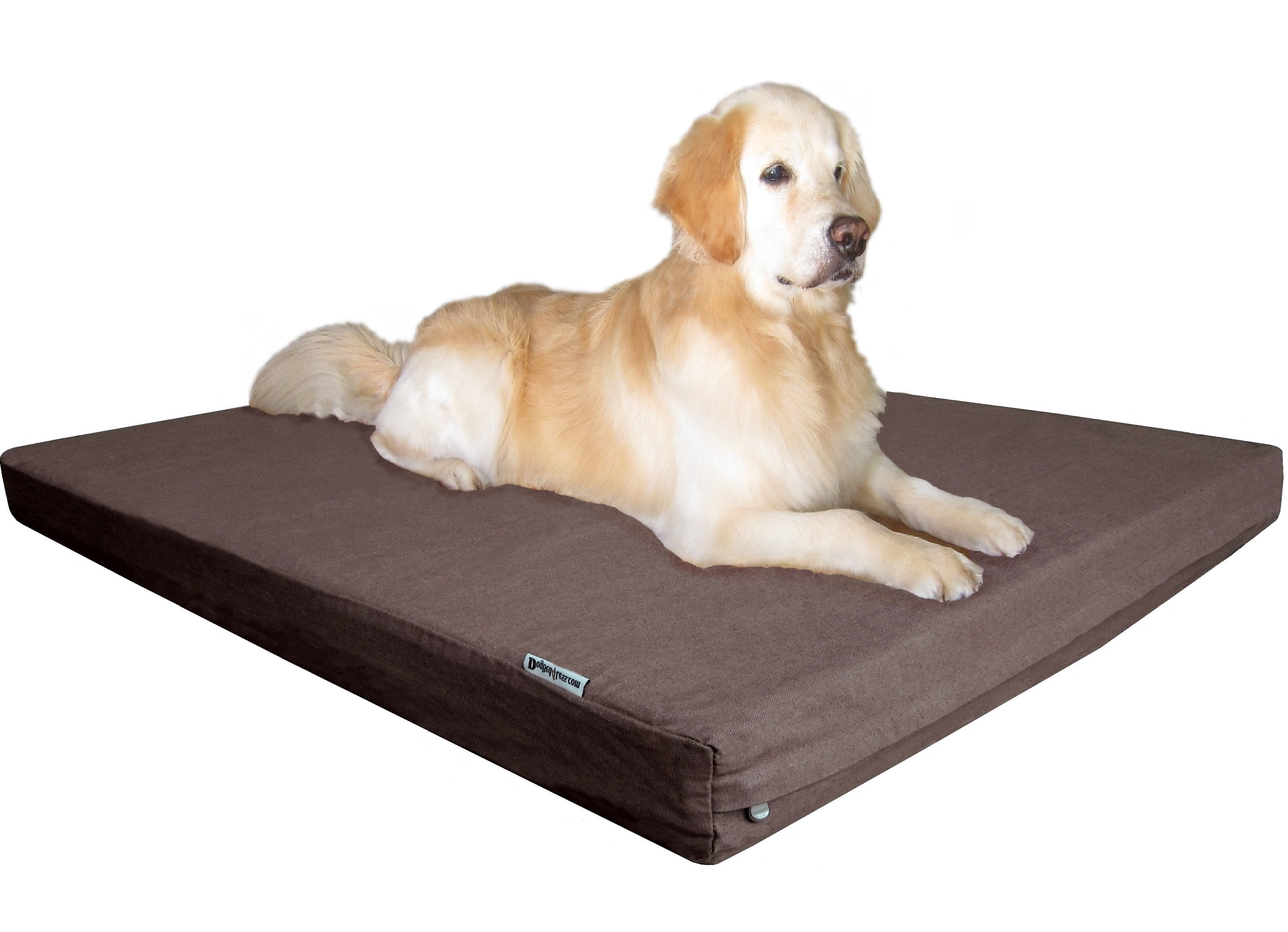 Medium to Extra Large Dog Bed Replacement Covers only Dogbed4less Durable Olive Green Canvas Pet Bed External Duvet Cover for Small