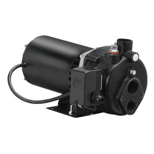 WAYNE 1 HP Cast-Iron Convertible Well Jet Pump