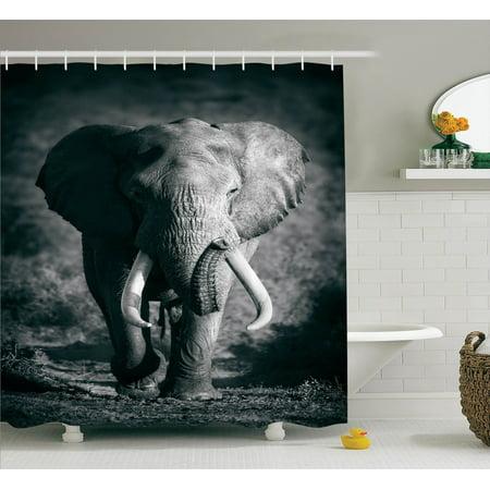 Elephants Decor Shower Curtain Set Majestic Elephant Bull Roaching Photo Exotic Wild Habitat Mammal Art