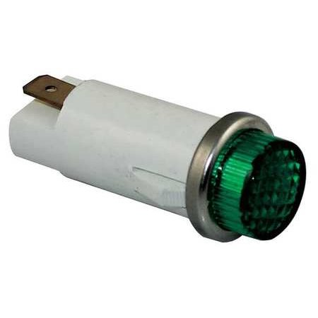 - DAYTON 22NY51 Raised Indicator Light,Green,120V