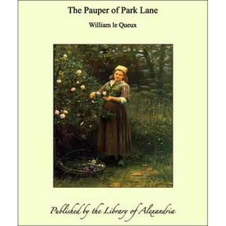 Mikasa Park Lane - The Pauper of Park Lane - eBook
