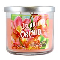719 Walnut Avenue Island Orchid Scented Candle, 14 Oz.