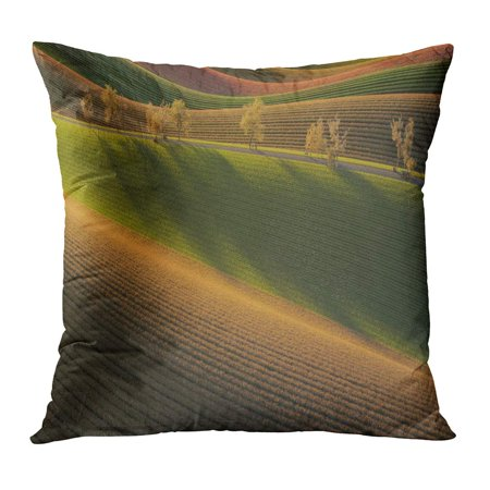 ECCOT Green Abstract 3D Rendering of Fields at Dawn Orange Agriculture Bale Barley Beauty PillowCase Pillow Cover 18x18 - Orange Barley