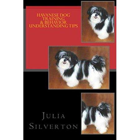 Havanese Dog Training & Behavior Understanding Tips