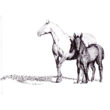 - Peel-n-Stick Poster of Horse Drawing Art Pen Artwork Poster 24x16 Adhesive Sticker Poster Print