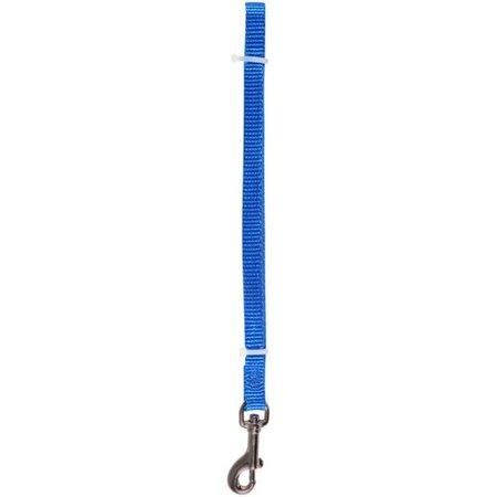 PetWear Dog Leash, Blue, Small