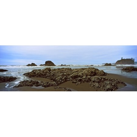 - Rock formations on the beach Ruby Beach Olympic National Park Olympic Peninsula Washington State USA Stretched Canvas - Panoramic Images (27 x 9)