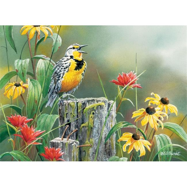 Outset Media 1000 Piece Meadowlark Morning Puzzle