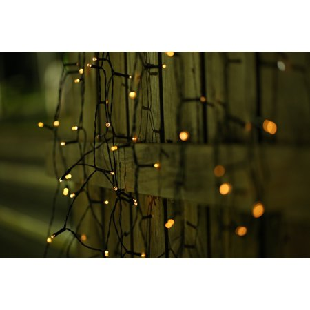 Solar Powered 100 Warm White LED Lights String by Moxava. ()