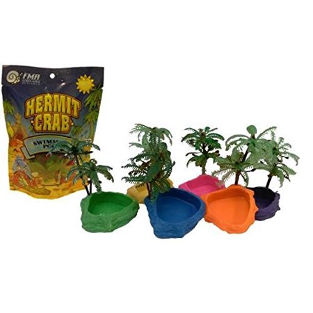 Hermit Crab Packaged Neon Swimming Pool (Pack of