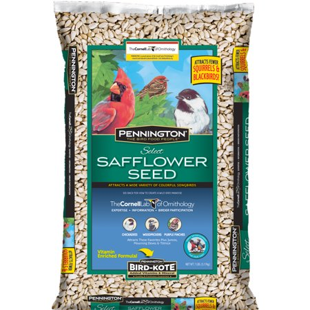 Pennington Wild Bird Feed and seed Select Safflower Seed, 7 Lbs (Sunflower Wild Bird Seed)