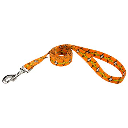 Country Brook Design® When Pumpkins Fly Dog Leash