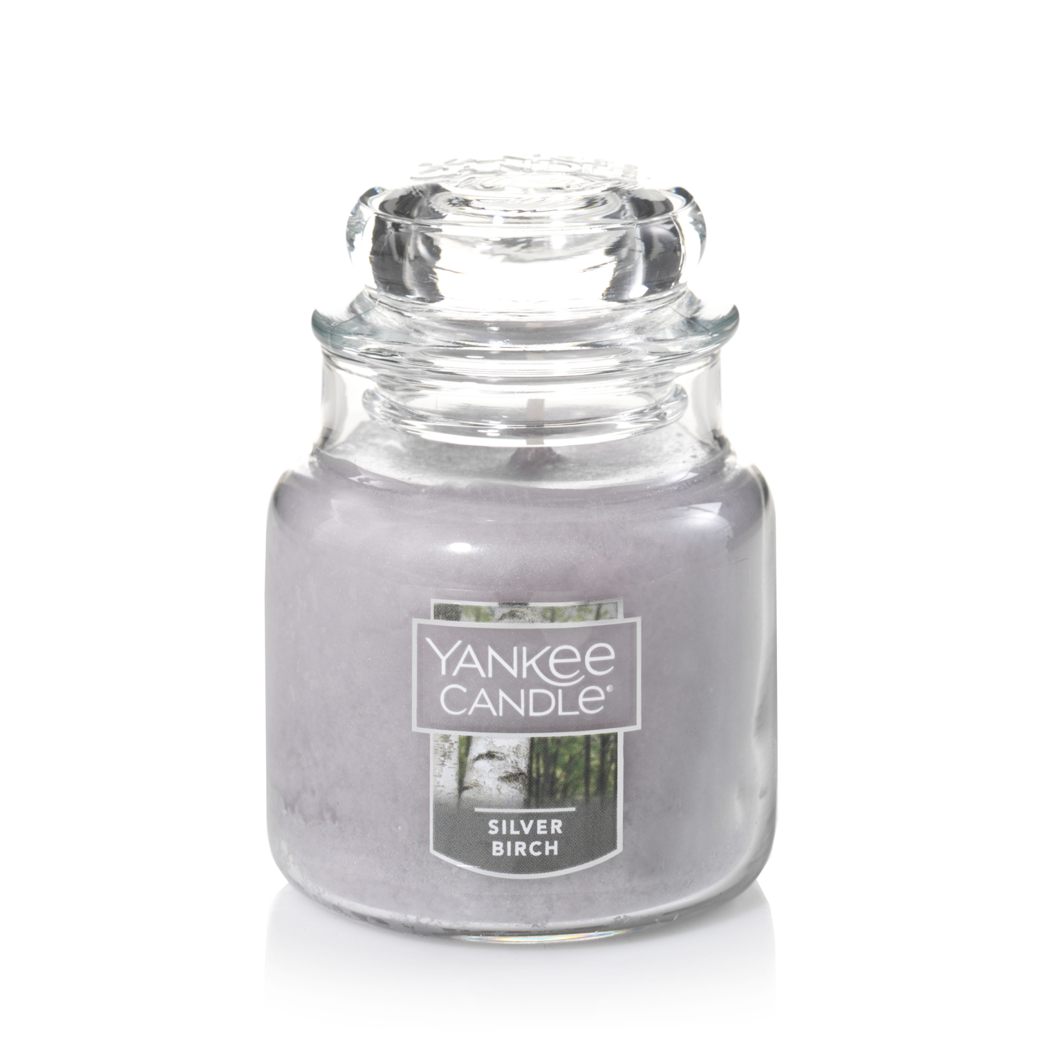 Yankee Candle Small Jar Candle, Silver Birch