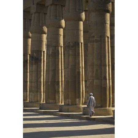 Temple Guard Walking Past Columns In Court Of Amenophis Iii Canvas Art - Ian Cumming  Design Pics (11 x 17) (Ms Guard Column)
