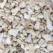 Carib Sea Aragonite 00150 Florida Crushed Coral Sand, 40 lb/Bag