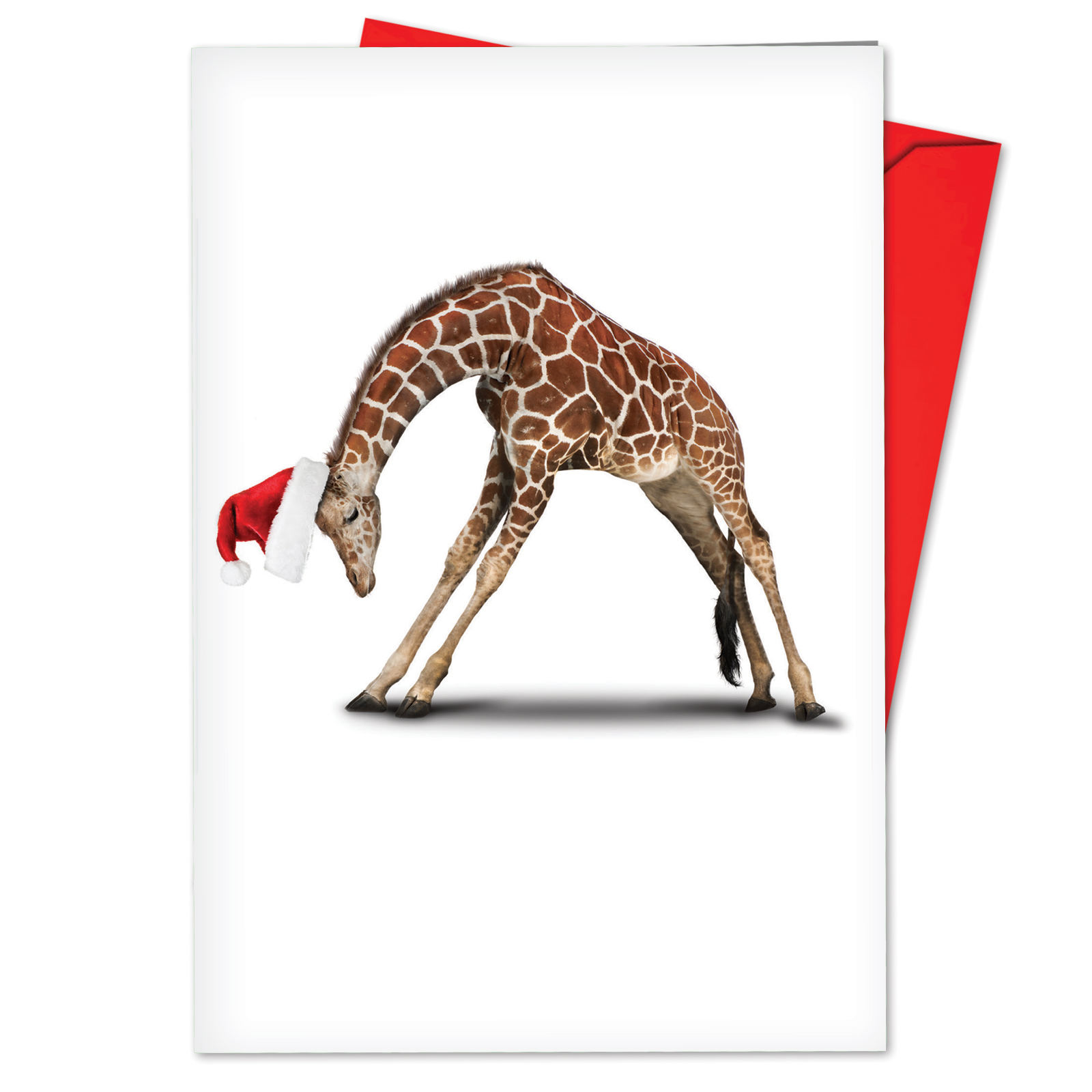 'B6547BXSG Zoo Yoga Christmas Cards' Box Set of 12 Funny Merry Christmas Note Cards with Envelopes by NobleWorks