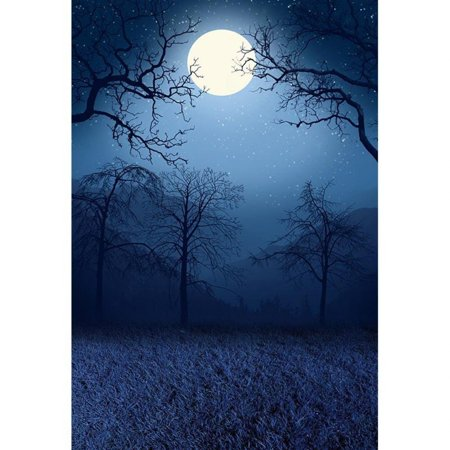 EREHome Polyester Fabric Outdoor Autumn Night Scenic Photography Backdrop Digital Trees Moon Grass Floor Dark Forest Background for Photo Studio 5x7ft - image 1 of 1