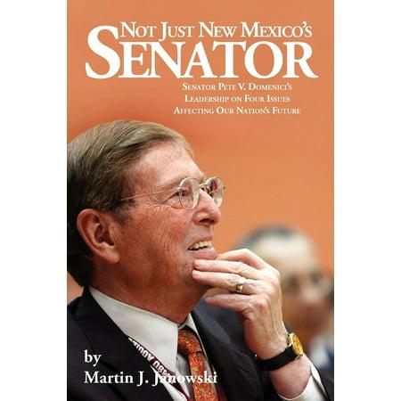 Not Just New Mexico's Senator - eBook (Senator Roman)