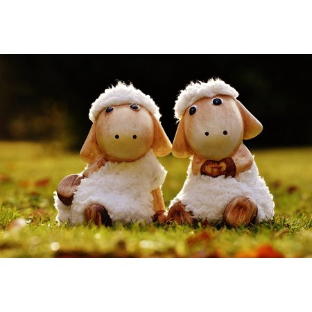 Sheep Fig (LAMINATED POSTER Soft Toy Wool Sheep Cute Face Fig Ceramic Deco Poster Print 24 x)