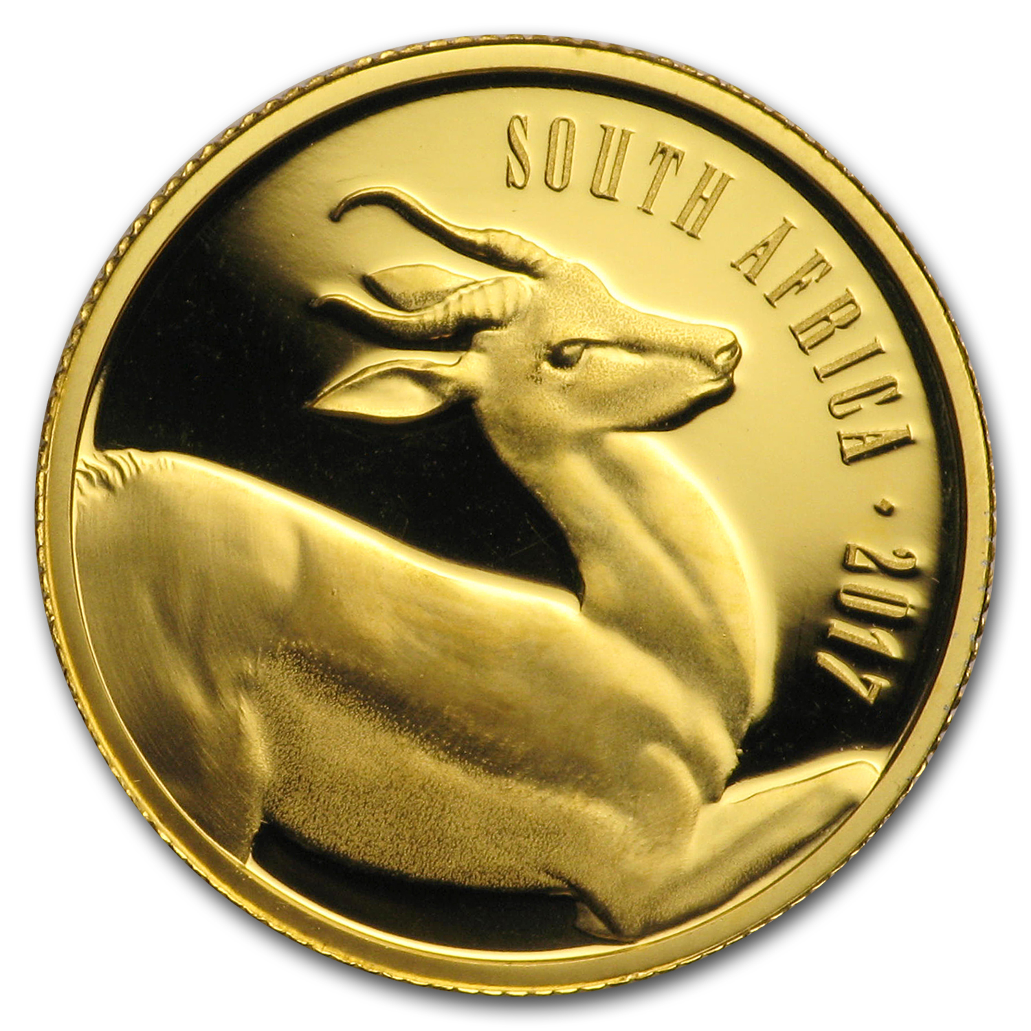 2017 South Africa 1/10 oz Gold Natura The Springbok