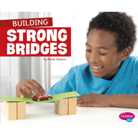 Fun Stem Challenges: Building Strong Bridges (Hardcover)