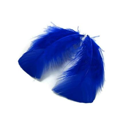 1 Pack - Royal Blue Turkey T-Base Plumage Feathers 0.50 Oz.](Turkey Feather)