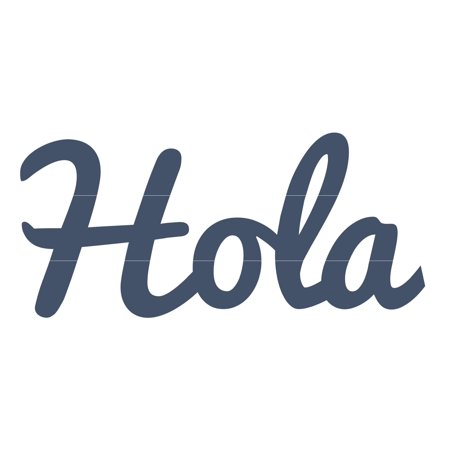 Hola Distressed & Painted Cutout Vintage Ready To Hang Wall Monogram Home Decor (Plastic)