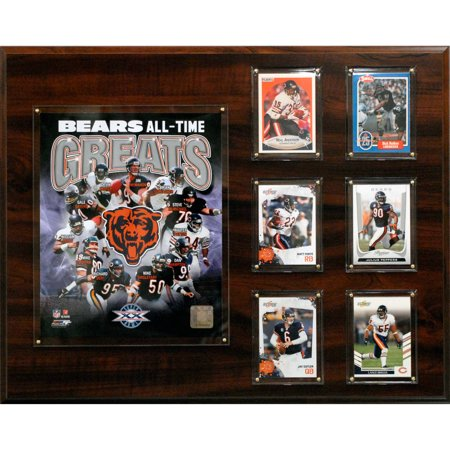 C&I Collectables NFL 16x20 Chicago Bears All-time Great Photo