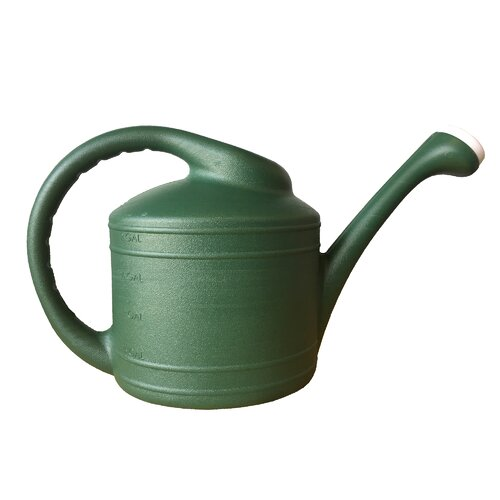 Southern Patio WC8108FE 2 Gallon Plastic Watering Can