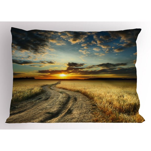 Nature Pillow Sham Road In The Field With Ripe Yellow Wheat Garden Under Cloudy Sunset Sky Landscape Decorative Standard Queen Size Printed Pillowcase 30 X 20 Inches Multicolor By Ambesonne Walmart Com