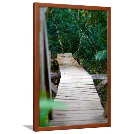 Wooden Bridge over River in Jungle Photo Poster Print Framed Poster Wall Art - Wooden Poster Frames