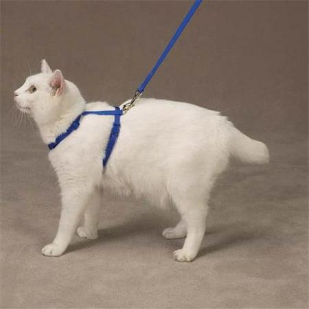 Savvy Tabby Nylon Cat Harness Blu Walmart Com