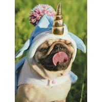 Avanti Press Unicorn Pug Funny Birthday Card