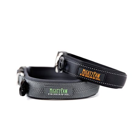 """Mighty Paw Neoprene Padded Running Dog Collar, Quality Sports Collar with Reflective Stitching, Extra Comfort for Active Dogs (Black- Small 12-15"""")"""
