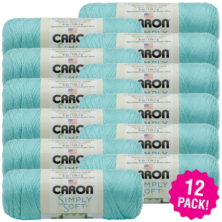 Caron Simply Soft Solids Yarn - Robin's Egg, Multipack of 12