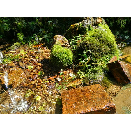 Creek Outdoor Wall Mount (Acrylic Face Mounted Prints Rock Moss Creek Running Water Brick Woods Stone Print 14 x 11. Worry Free Wall Installation - Shadow Mount is Included. )