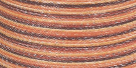 Dual Duty Plus Hand Quilting Multicolor Thread 250 Yards Autumn ... : thread for hand quilting - Adamdwight.com