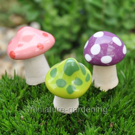 Miniature Pico Shroomyz Mushrooms, 3 Assorted Piece Set for Miniature Garden, Fairy Garden (Mushroom 3 Piece Set)