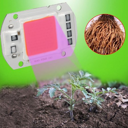 110V/50W Full Spectrum LED COB Chip Grow Light Plant Growing Lamp Bulb - image 1 of 7