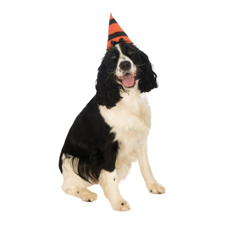 Orange Black Witch Warlock Hat For Pet Dog - Warlock Costume